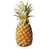 Pineapple Large Pc